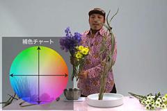 花をいける以外に、色や花の種類、特性なども勉強できますか?