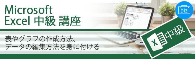 Microsoft Excel 中級